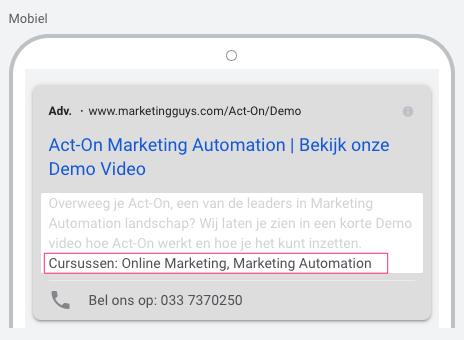 Website informatie extensie Google Ads